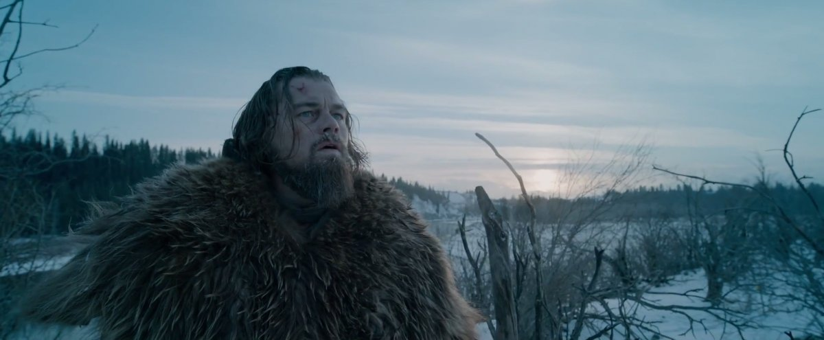 the-location-where-dicaprio-finds-the-bison-herd-was-discovered-by-accident