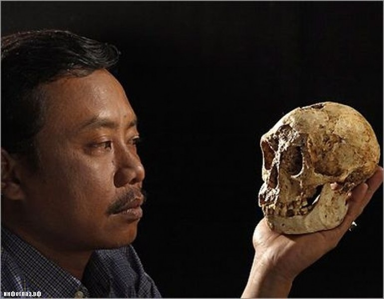 homo floresiensis pathological modern human or Homo floresiensis, or pathological modern humans has been debated analysis  of  this evidence indicates that lb1 is not a modern human.
