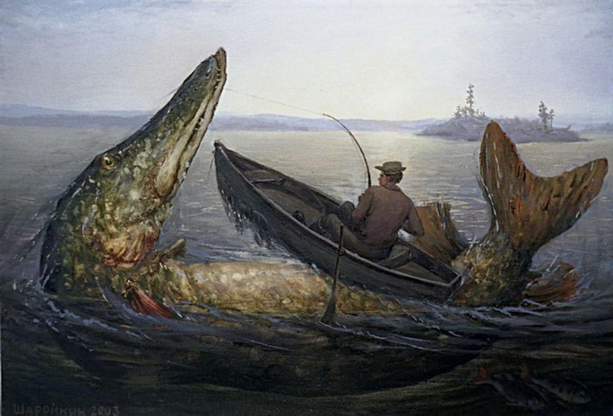 ловля большой рыбы щуки