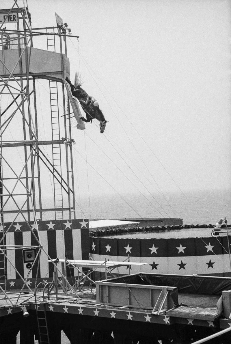 Лошадиный дайвинг — прыжки в воду на лошади с 18-метровой высоты
