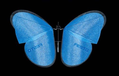Роботы-бабочки eMotionButterfly #2