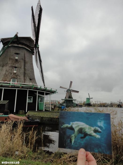 Гоес, Нидерланды — 30 Ноября