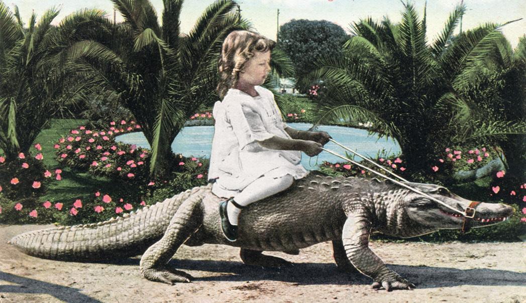 Joy_Riding_California_Alligator_Farm