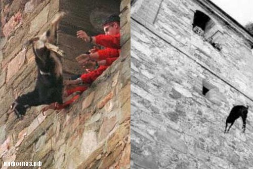 Tossing-A-Goat-Off-A-Church-Building-in-Spain