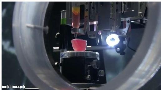 3D печать искусственной почки
