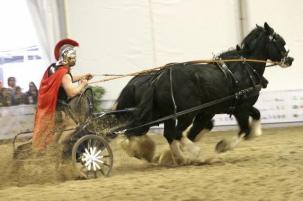 В Древнем Риме допингом потчевали даже лошадей, участвовавших в состязаниях колесниц
