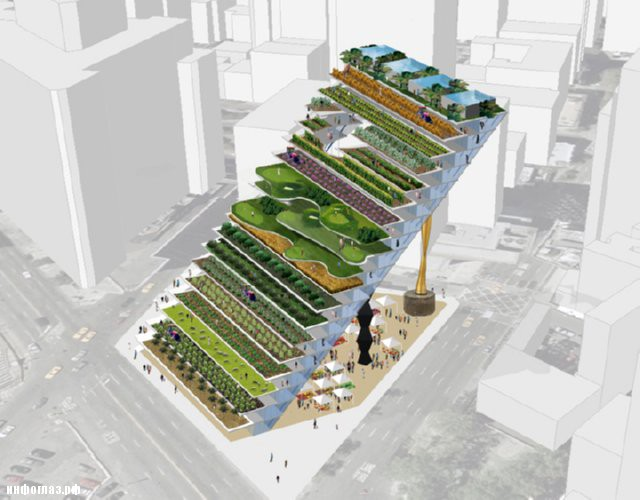 vertical farming thesis