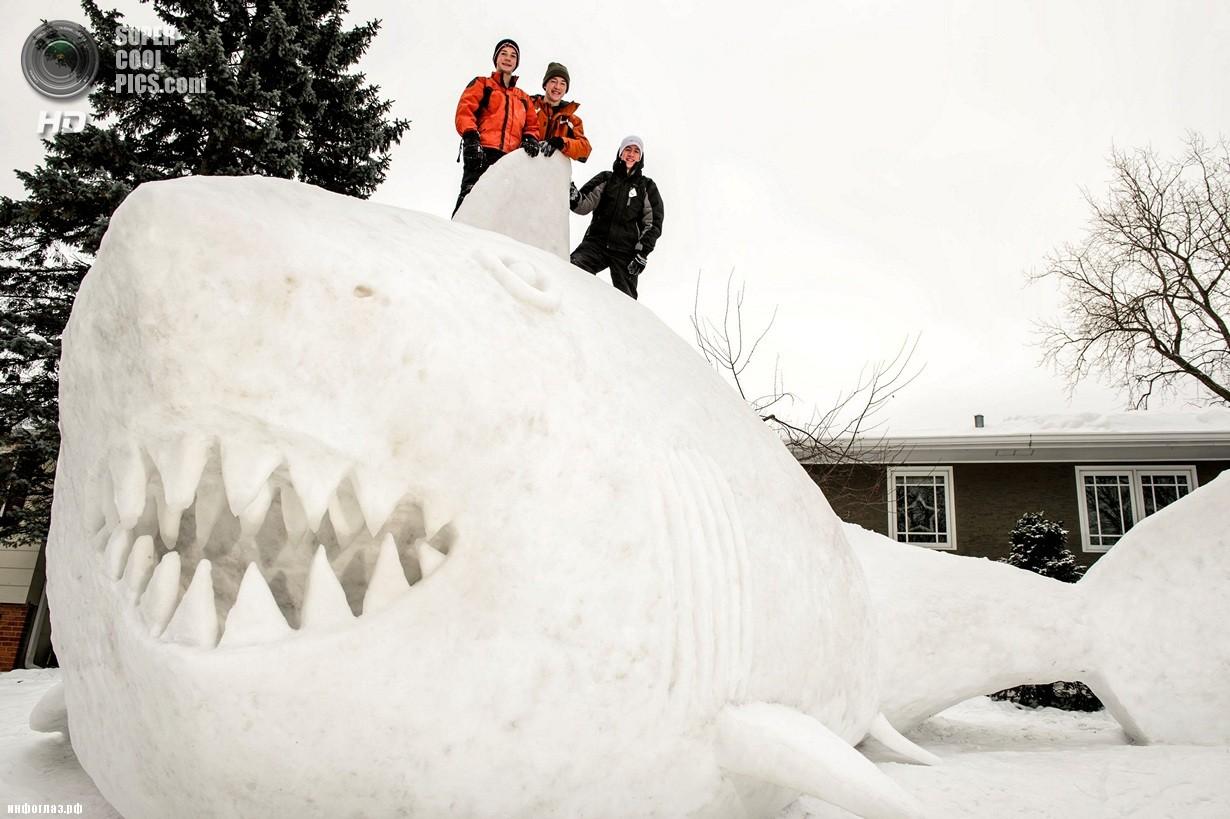 США. Нью-Брайтон, Миннесота. 1 января. Последствия рекордных морозов. (AP Photo/Glen Stubbe)
