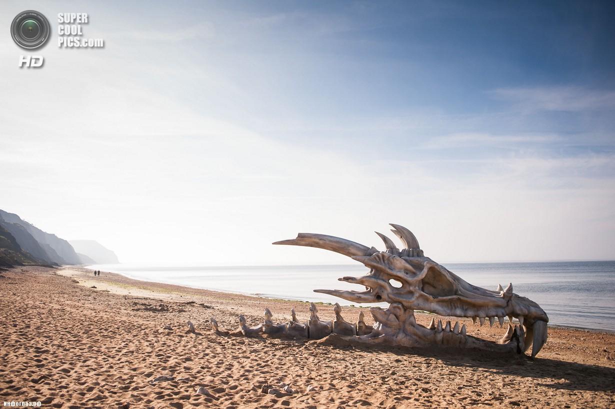 Великобритания. Лайм-Реджис, Дорсет, Англия. 15 июля. Скульптура в виде черепа дракона. (DANIEL LEWIS/blinkbox)