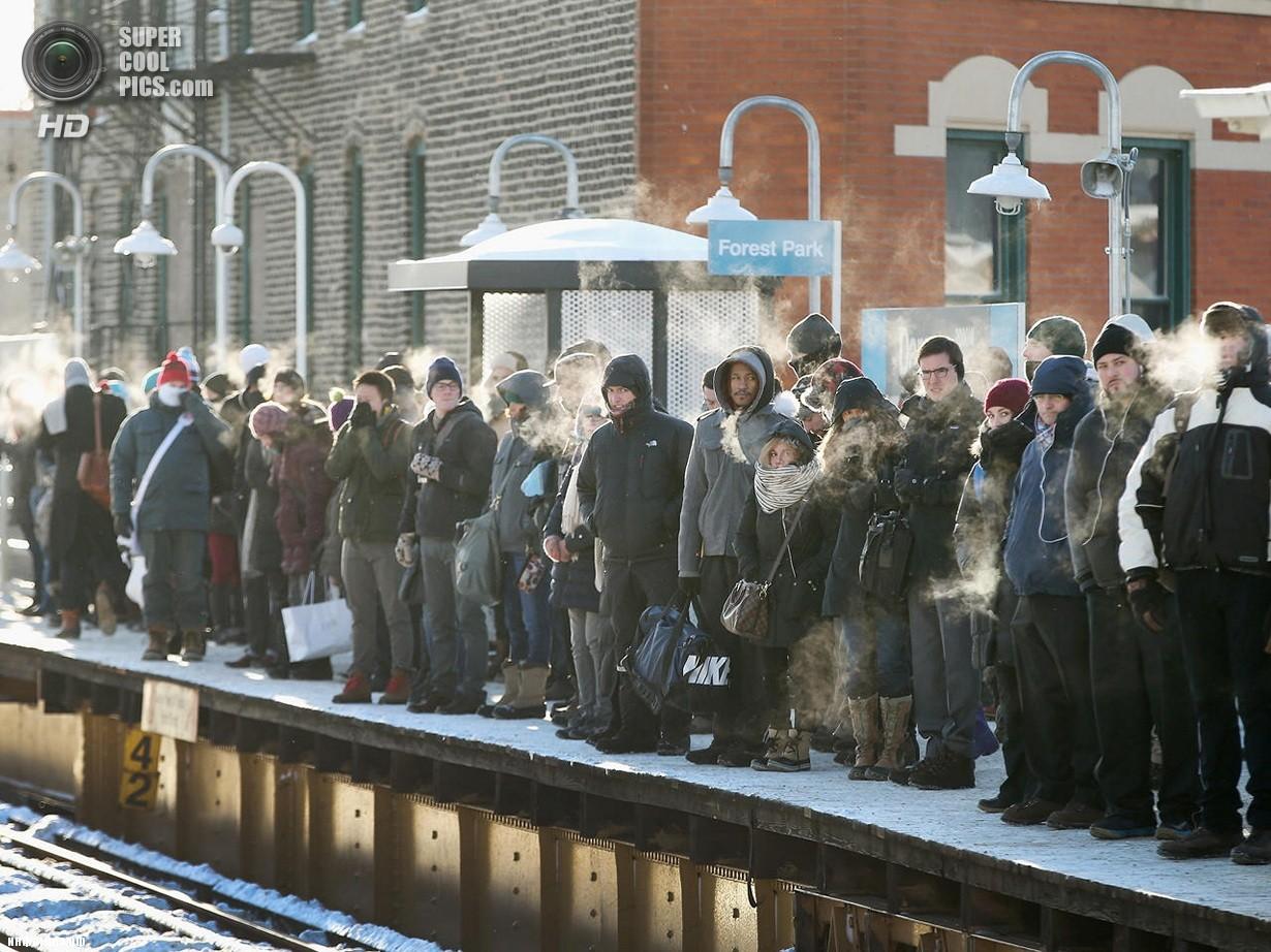 США. Чикаго, Иллинойс. 7 января. Последствия рекордных морозов. (Gerry Images)