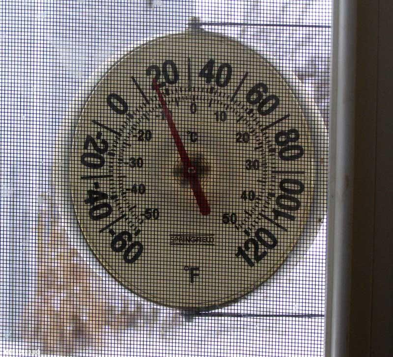 В США ожидаются экстремальные холода, но не такие, как обещают в российских СМИ